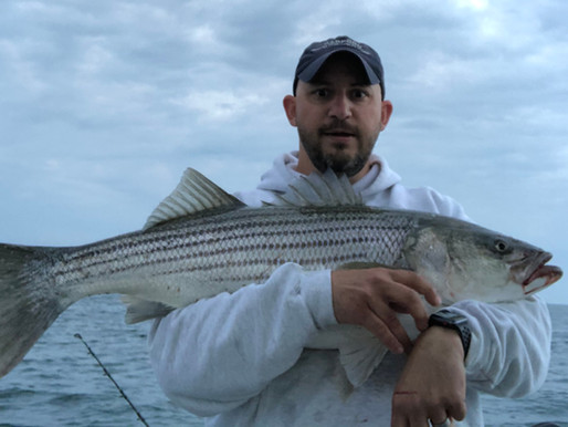 Honest Fishing Reports from Charter Captains around the area.  (Picture by AltrichAnglers)