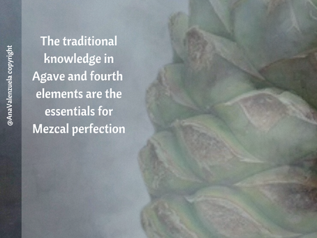 The three basic P's tasting for agave spirits.