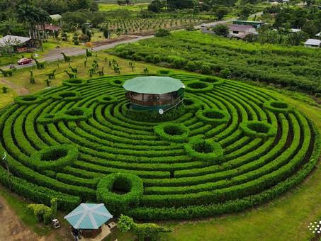 Costa Rica: Maze in Katira, Guatuso