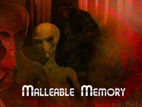 Malleable Memory