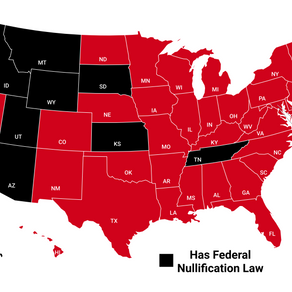 "Understanding The Supremacy Clause & Why ""Federal Nullification Laws"" Could Land You In Prison"