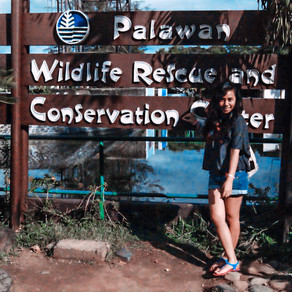 The Palawan Wildlife Rescue and Conservation Center Tour