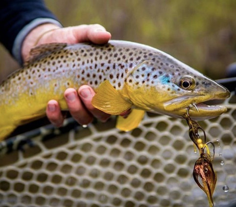How to Improve Your Streamer Fishing Game