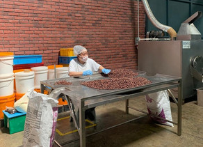 Our Trip To The Benns Ethicoa Bean To Bar Chocolate Factory
