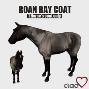 Ciao Amore - Coats
