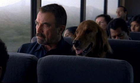 Film Review: Jesse Stone overview