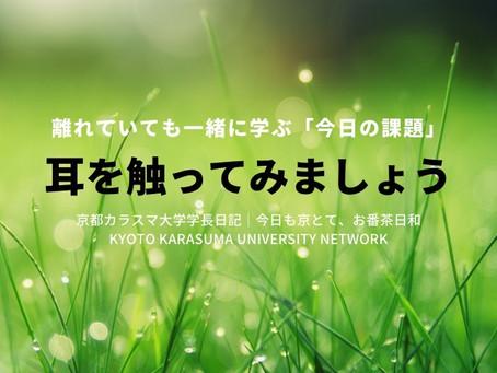 今日も京とて、お番茶日和|京都カラスマ大学学長日記(4/13)