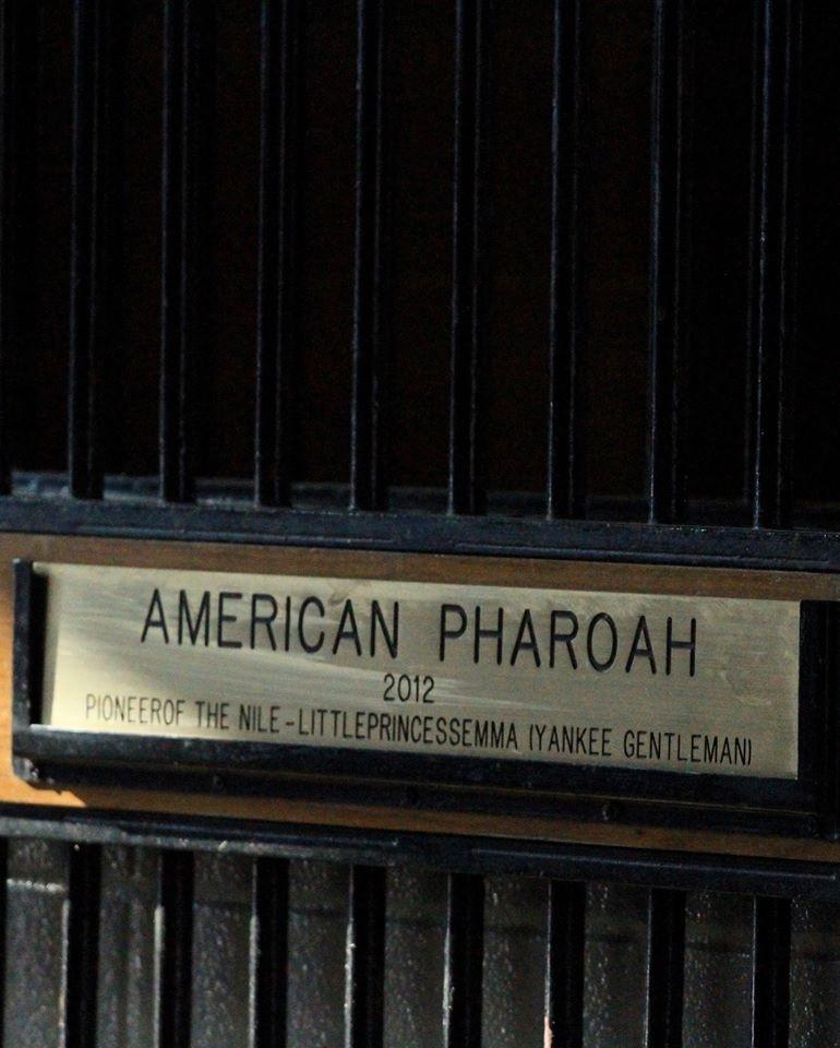 American Pharoah, Ashford Stud, Rebel Stakes winner