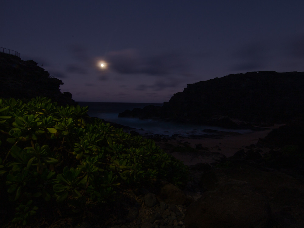 """The movie """"From here to Eternity"""" was filmed here giving this beach it's name. I think the highlighting of the Naupaka plants, here, and stretching to the Moon, Eternity, is fitting."""