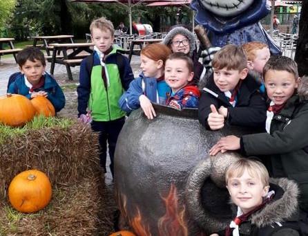 Beavers Visit Paultons Park