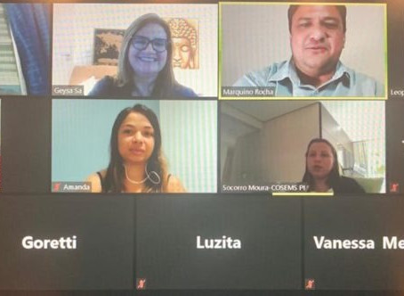 Transparência: TCE/PI apresenta ferramenta Painel Covid-19 a dirigentes do Cosems-PI