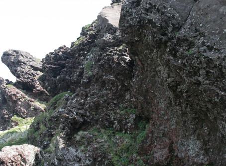 백록담 조면현무암