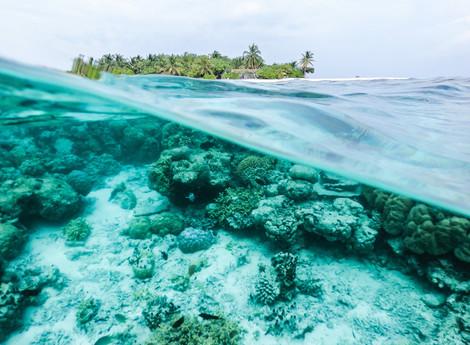 Acciones viajeras para causar menor impacto ambiental