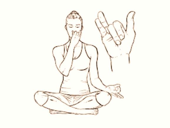 cours yoga le Lavandou