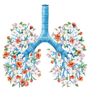 Lungs and Longevity