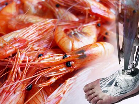 ¡Increíble! Mexicano creó una prótesis con cáscara de camarón