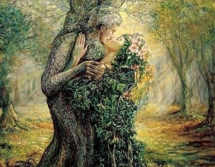 Wiedźma i słoje drzewnej radości.
