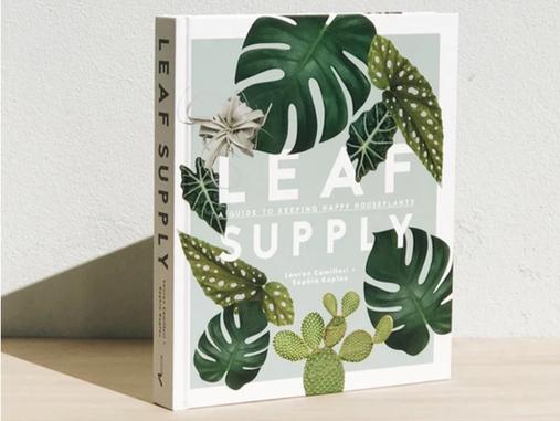 Book Club: Spring Picks