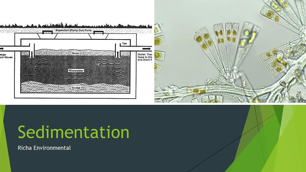 What is Sedimentation in Effluent Treatment Sewage Treatment Plants
