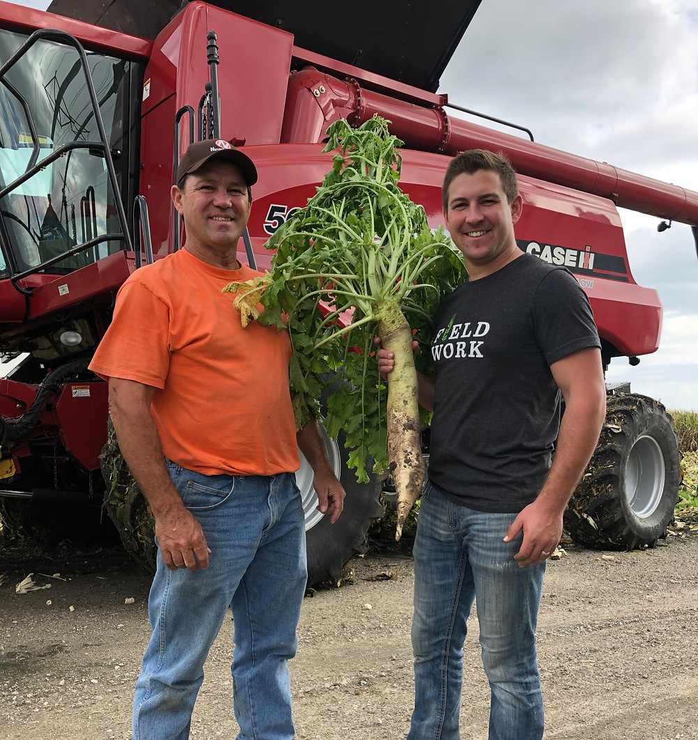 Brian (left) and Mitchell Hora (right) with their massive tillage radish that was planted as part of the June interseeded cover crop.