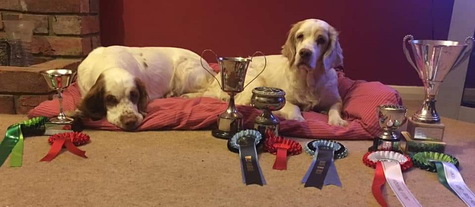 The Clumber Spaniel Club working test results