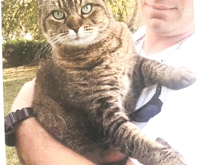Cat trapped and dumped by crazy neighbor.