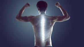 10 dicas para manter a coluna saudável