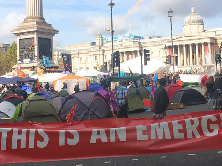 Museums and the Climate Emergency: what we should do.
