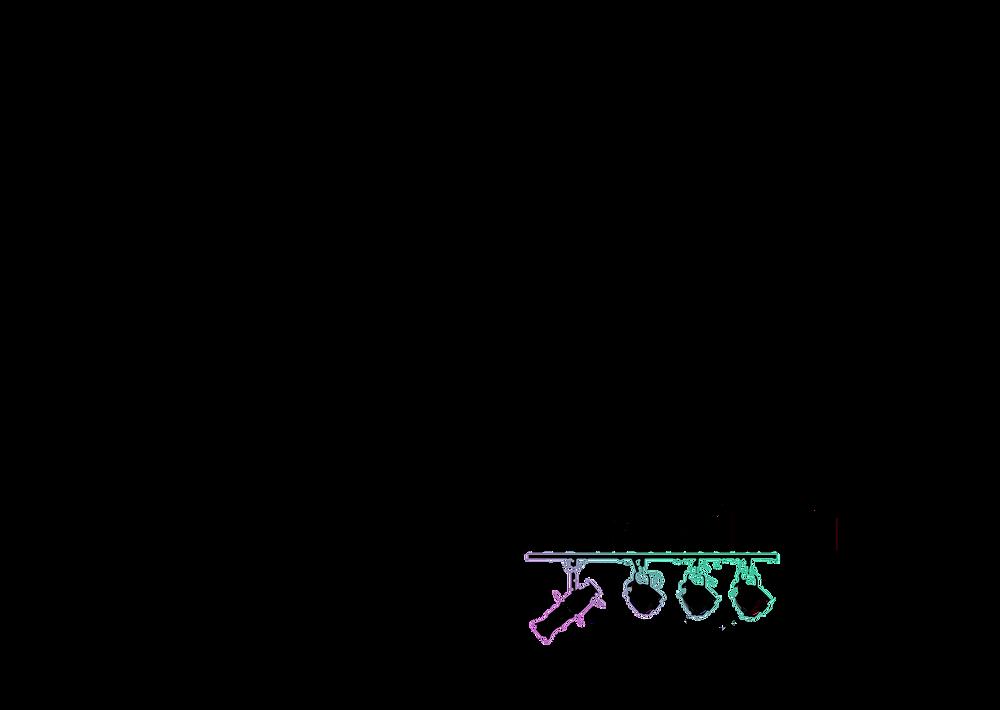 Life In Entertainment Logo