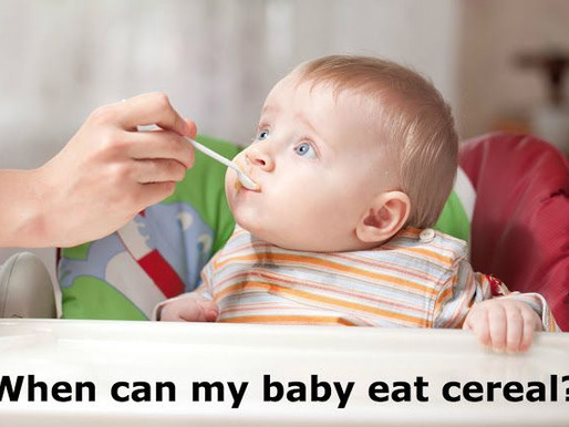 Why babies CAN digest starches and cereals.