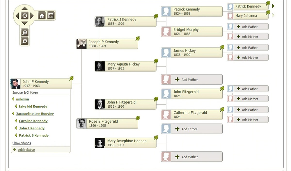 Online family tree tool