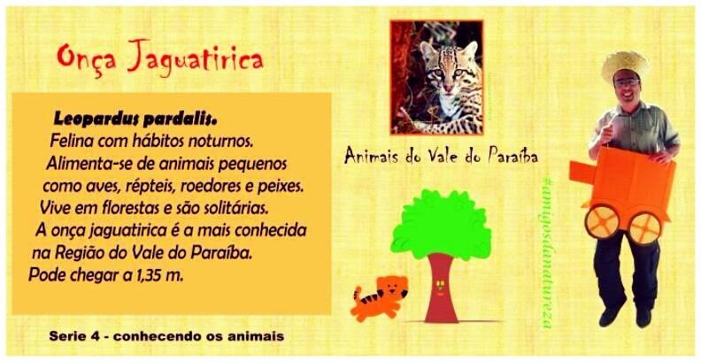 (image/disclosure) Children's literature @sonhosdefrancisco