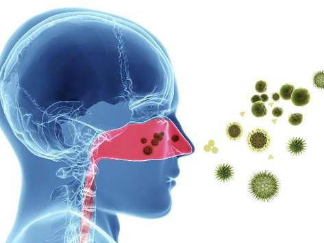 알레르기 비염, 어떻게 극복할 것인가?