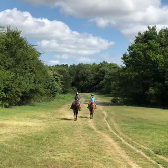 Bring the Family for a Thanksgiving Trail Ride                         at Benbrook Stables