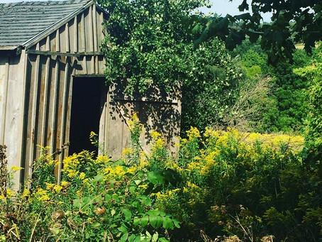 The Avon Trail: my own mini-Camino