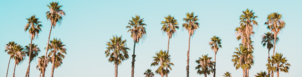 verão praia sol mar