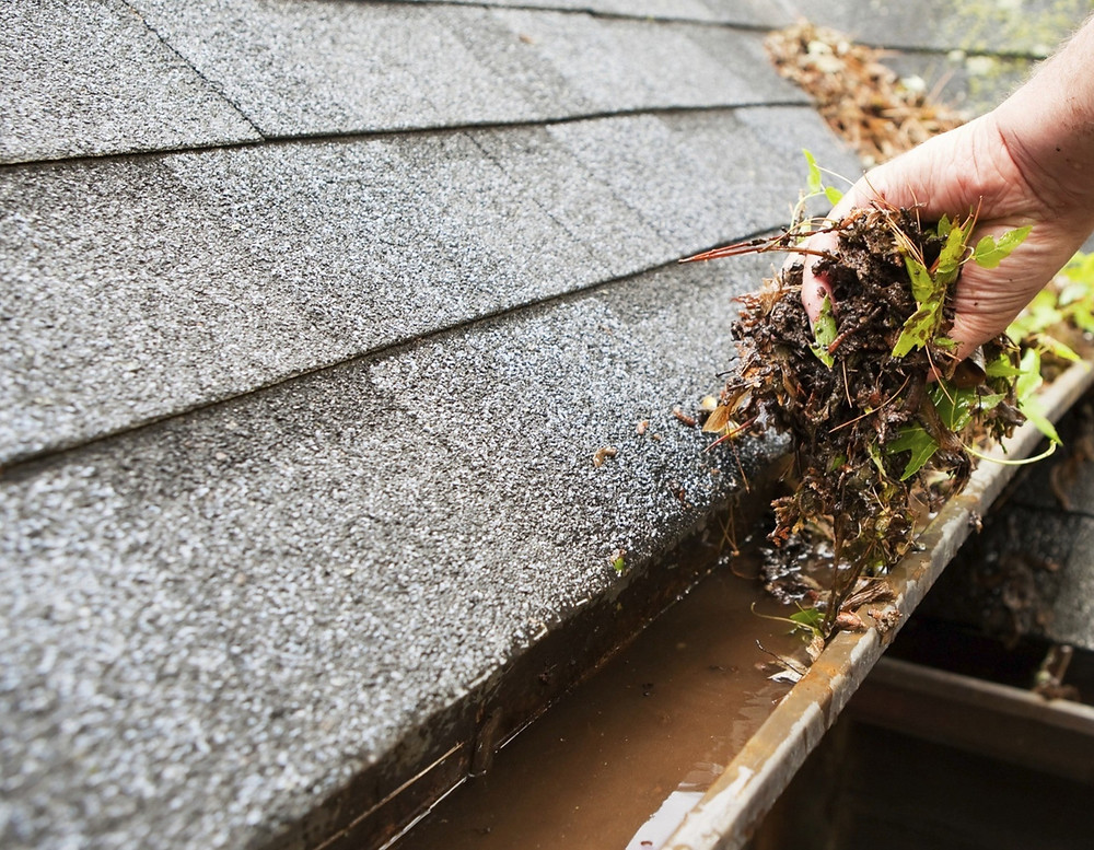 Home gutter clogged with debris and leaves getting cleaned