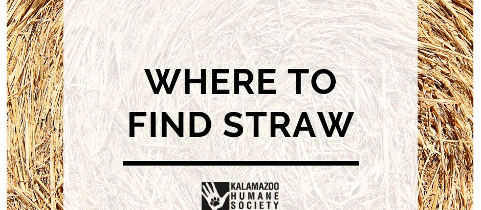 Where to find straw