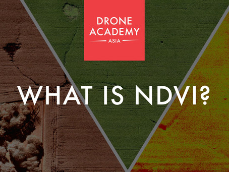 What is NDVI?