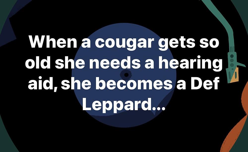 Funny Cougar Memes