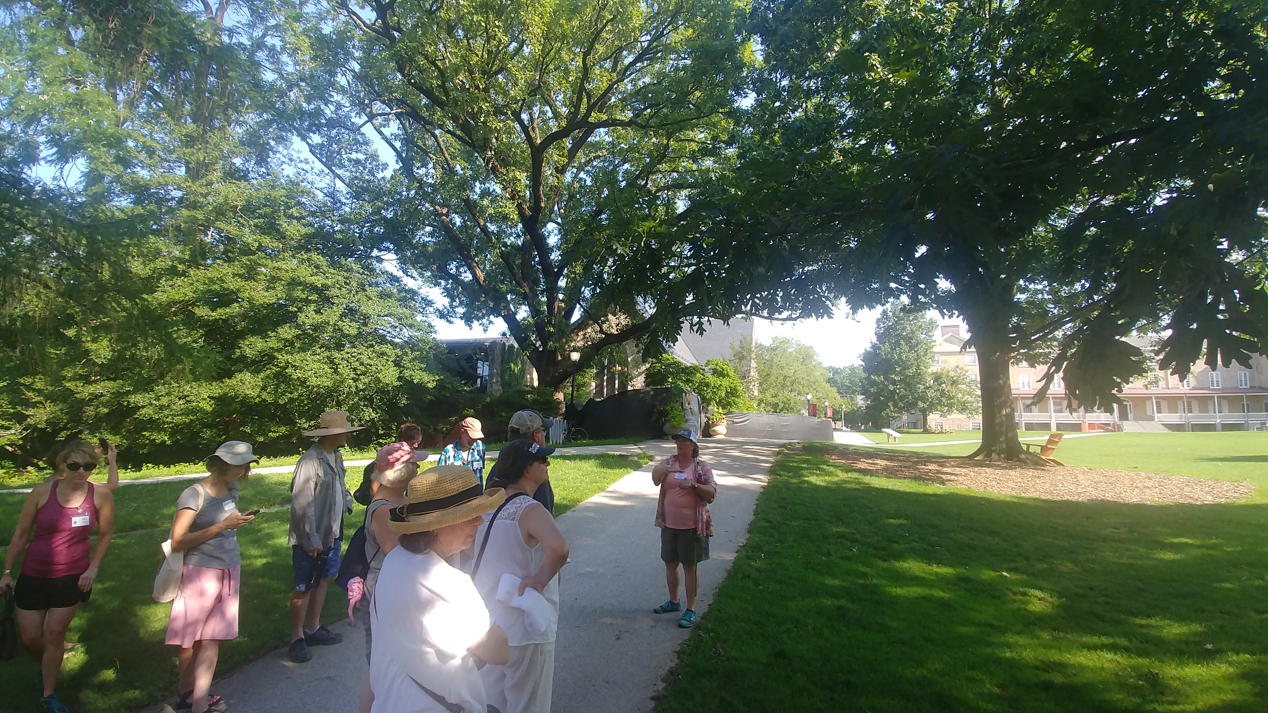 Horticulturist Carol Wagner tells us about the burr oak behind and to her right