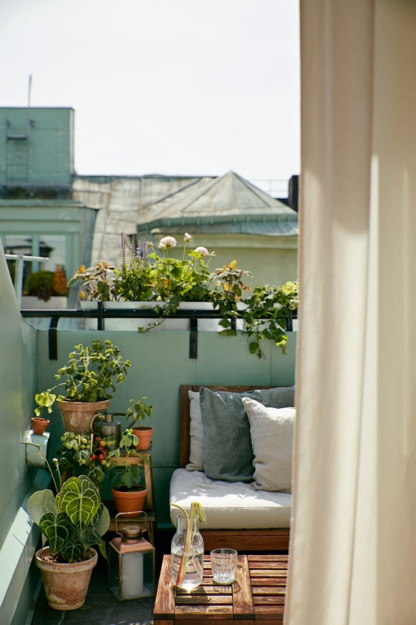 If you always wanted to cultivate your hobby of being a gardener, now it's time to flaunt your little inner plant parent shine. If you lack the space of a rooftop garden, make your balcony an excellent alternative