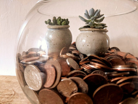 PUT YOUR MONEY WHERE YOUR MOUTH IS - WHY WE ARE USING TRIODOS FOR OUR BUSINESS FINANCES