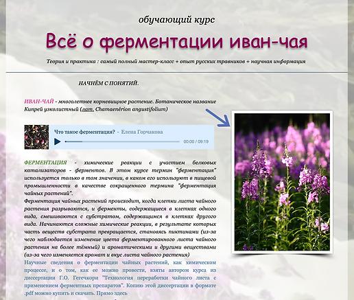 Снимок экрана 2020-07-06 в 06.52.42.png