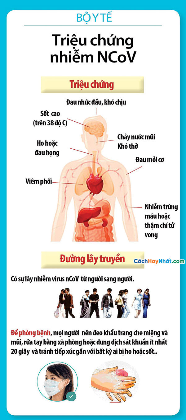File In Standee Banner Phòng Chống Virus CORONA COVID-19 Vector Corel