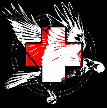 CROW medics logo.png