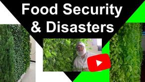 Food Security & Disasters