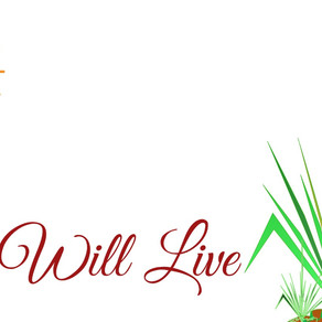 Life Will Live