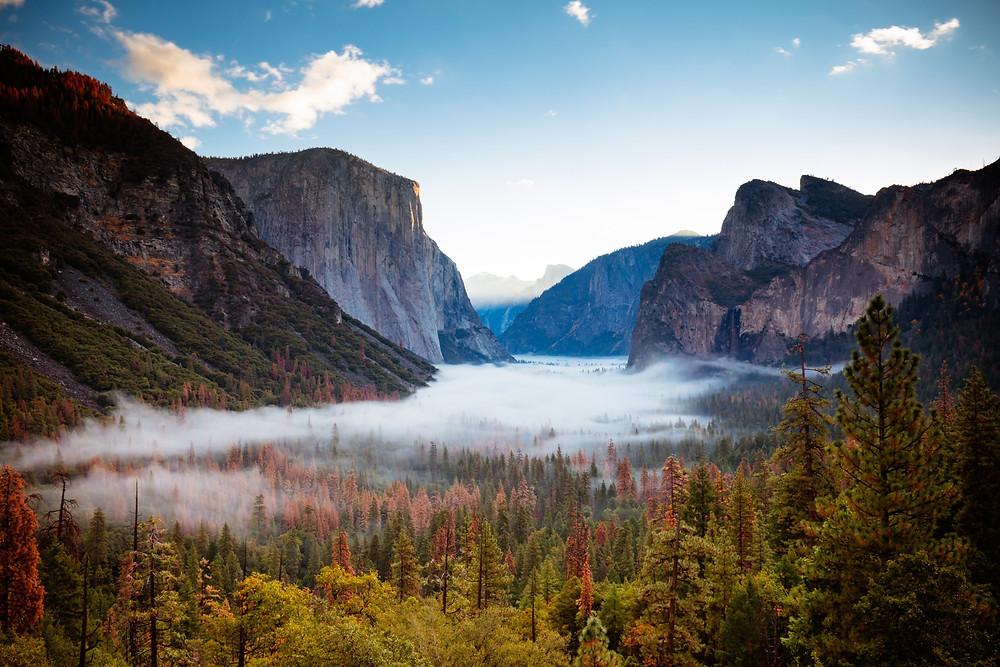 Yosemite Valley, Yosemite NP