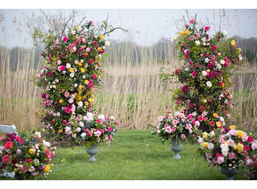 Garden Roses in Bloom at Blossoming Herkenrode 2019